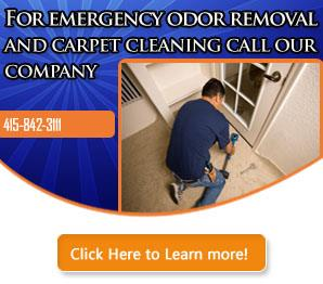 Mold Removal - Carpet Cleaning Mill Valley, CA